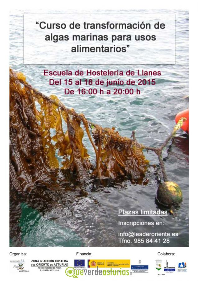 Curso de transformaci n de algas marinas para usos - Cursos cocina asturias ...