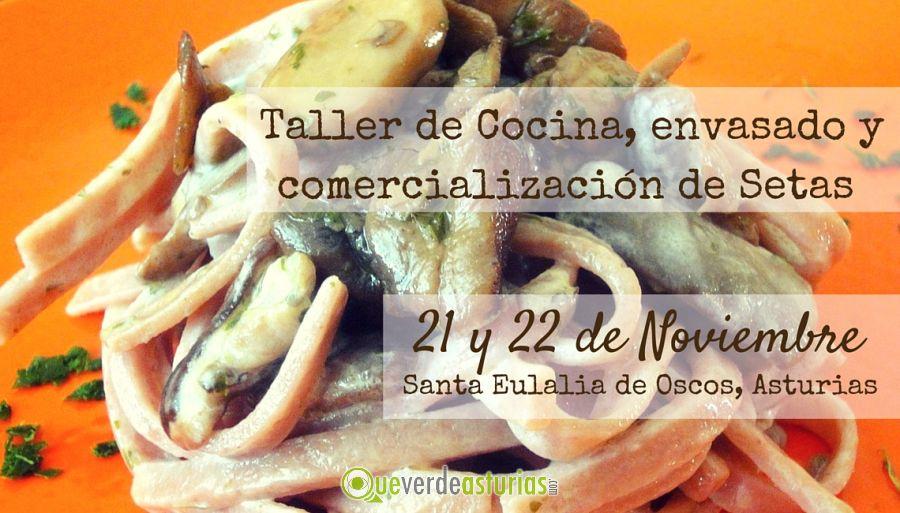 Taller de cocina envasado y comercializaci n de setas - Cursos cocina asturias ...