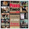 Feria del Perro 2020 en Tineo