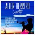 Aitor Herrero en concierto en El Patio de la Favorita