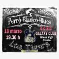 Perro Blanco Blues & Los Tigers en Concierto