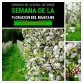 Floración del Manzano 2017 en La Comarca de la Sidra