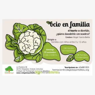 Ocio en familia: Taller de Huerto Ecológico