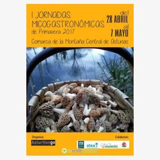I Jornadas Micogastronómicas de Primavera 2017 en la Comarca de la Montaña Central de Asturias