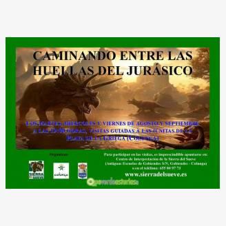 Visita Guiada: Caminando Entre las Huellas del Jurásico
