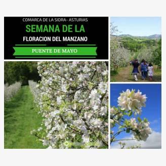 Semana de la Floración del Manzano - Comarca de la Sidra 2018