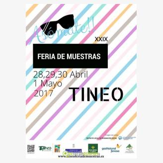 XXIX Feria de Muestras de Tineo 2017