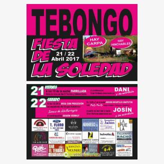 Fiestas de La Soledad Tebongo 2017