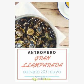 Gran Llamparada Antromero 2017