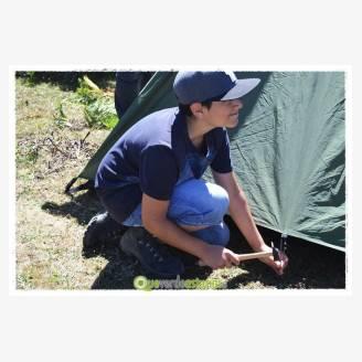 "Campamentos ""Oso Pardo!"