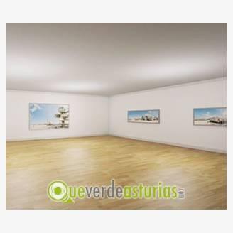 Exposición de Dionisio González: Construir, Habitaqr, Existimar
