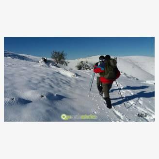 Finde en raquetas de nieve